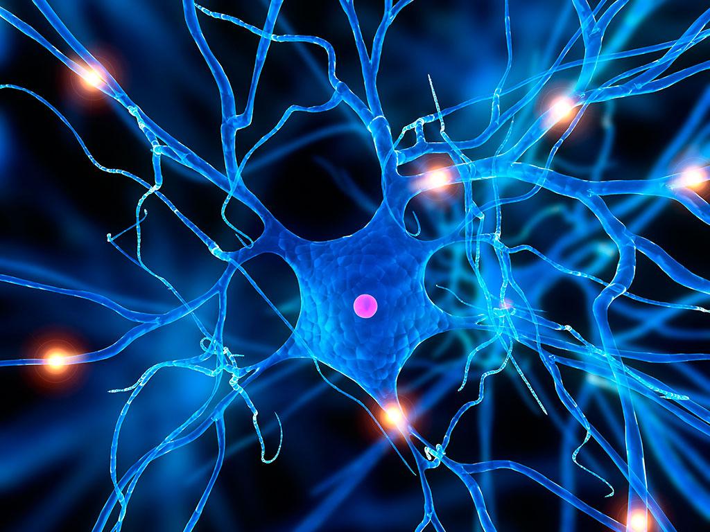 neurodegenerative-disease-stress-granule-pathways-3